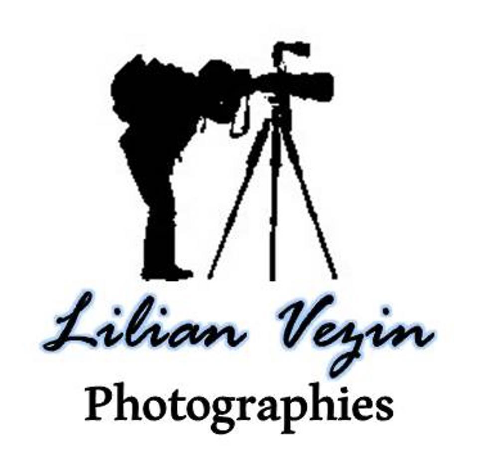 lilian-vezin-devousamoi